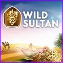 Casino Wild Sultan
